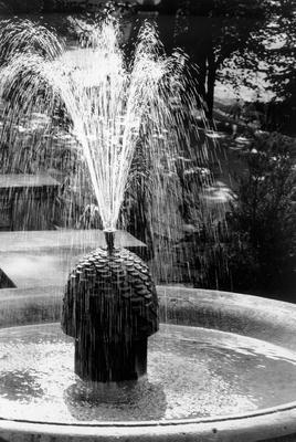 00477 Pineapple Fountain.jpg