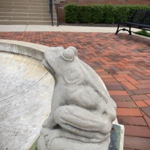 Stuyvesant Fountain Frog Close Up