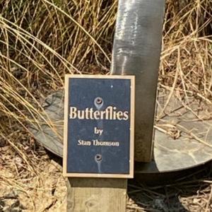 Butterflies plaque.jpeg