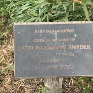 Baby Indian Rhino Plaque