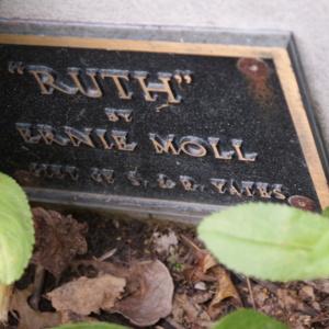 Ruth Plaque.JPG