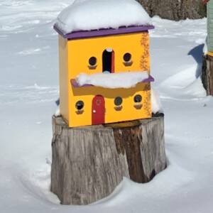 Large Yellow Gnome House