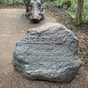 Skeeter Plaque and Mother Warthog
