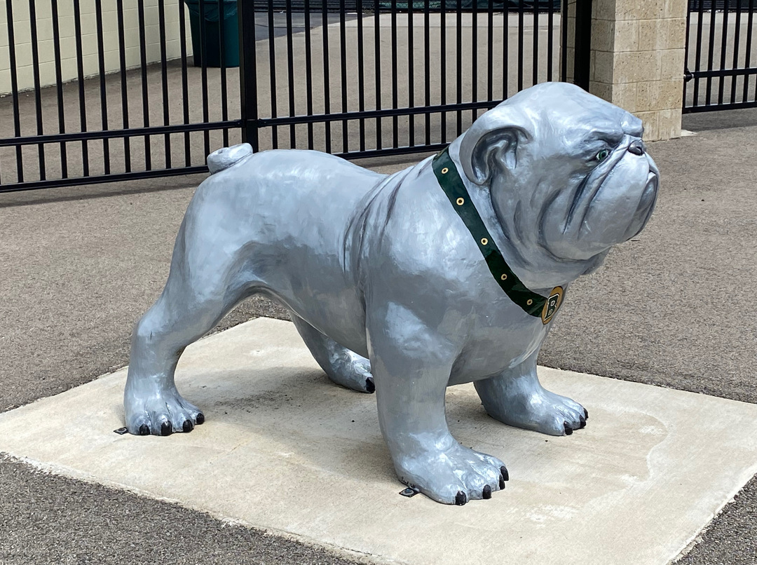 BataviaHS bulldog side.jpeg
