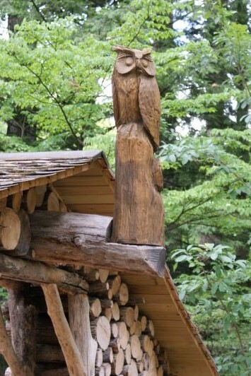 Secret Forest Owl.JPG