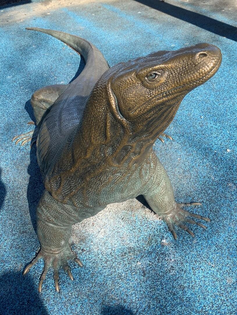 Komodo Dragon View 1