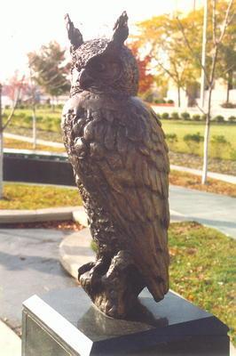 00674 Owl.jpg
