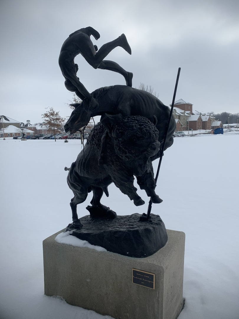 Buffalo Horse View 1