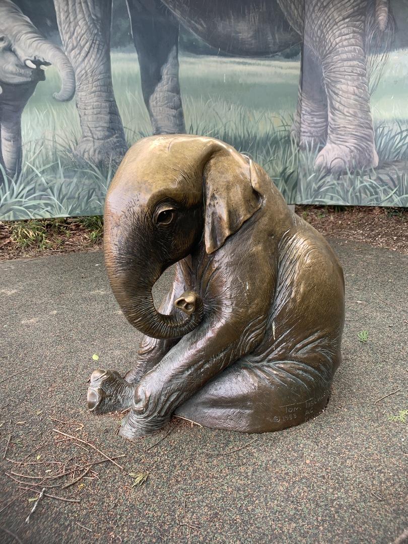 Elephant Child Left Side