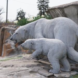 Polar Bears and Seal Closeup of Bears