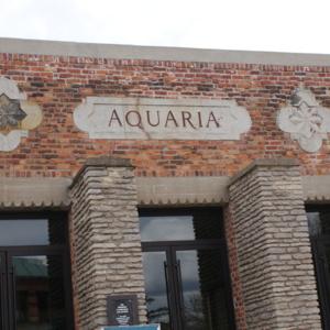 Aquaria Front.JPG