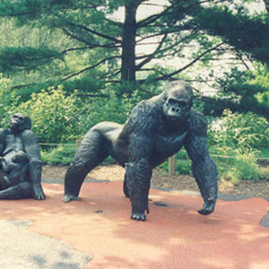 00902 Gorilla Family.jpg