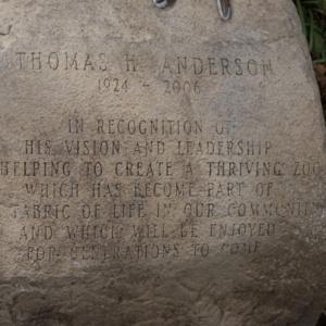Great Blue Heron Rock Inscription