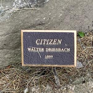 Citizen plaque.jpeg