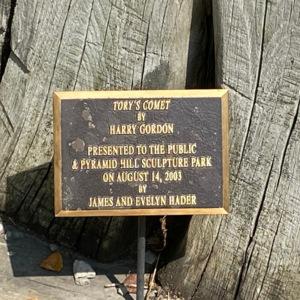 Tory's comet plaque1.jpeg