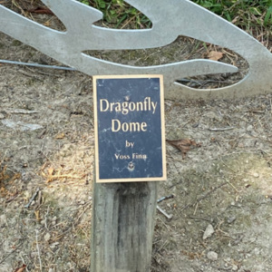 Dragonfly dome plaque.jpeg
