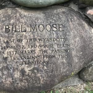 Bill Moose 3.png