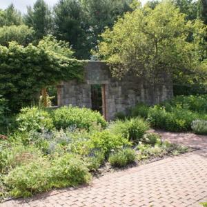 Cottage Garden Wall.JPG