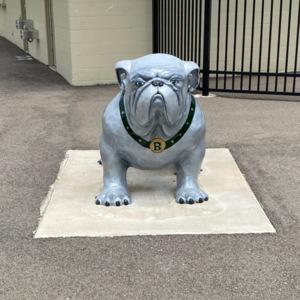 BataviaHS bulldog front.jpeg