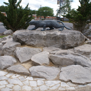Mountain Lion Rocks.JPG