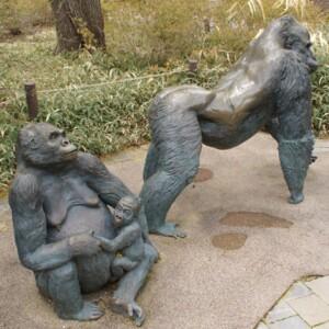 Gorilla Family Left View.JPG
