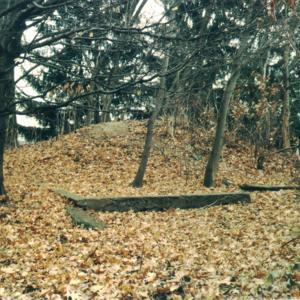 Woodshed 2.jpg