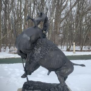 Buffalo Horse View 5